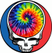 Grateful Dead tie dye Steal Your Face