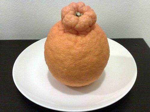 Dekopon Orange