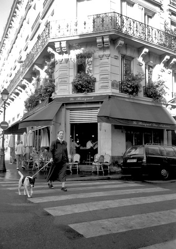woman and dog in crosswalk, Paris