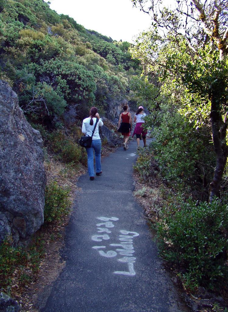DSC06794 Mount Tamalpais trail