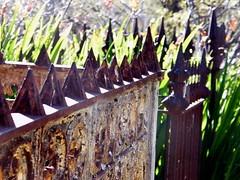 In dreams I walk... (Murfomurf) Tags: sunlight cemetery graveyard fence memorial iron dreams wrought monbretia westterrace