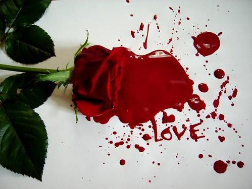 Love_by_LadybirdM_002