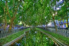 Avenida da Liberdade, Lisbon (HDR) (Omar Corrales) Tags: city trees green libertad avenida lisboa lisbon liberdade da 1022mm hdr highdynamicrange 1022 potugal avenidadaliberdade 10mm canon1022 canoneosdigitalrebelxti canoneos400ddigital canon1022mmf3545efsusm omarcorrales