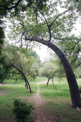 City Secret – DDA Park, Opposite Purana Qila