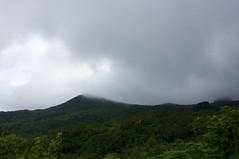 雲の中の夕張岳山頂