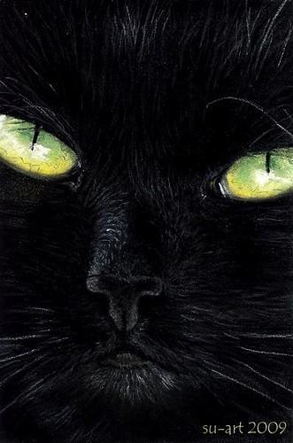 black is beautiful OSWOA von Nordlichter4.