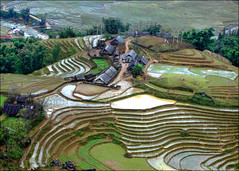 S A P A : Lao Chai (mboogiedown) Tags: travel green dan home nature beauty rural asian asia village rice terrace farm traditional country lifestyle vietnam housing northern ethnic lao chai sapa hmong feilds undeveloped terraced minorities tanada senmai earthasia