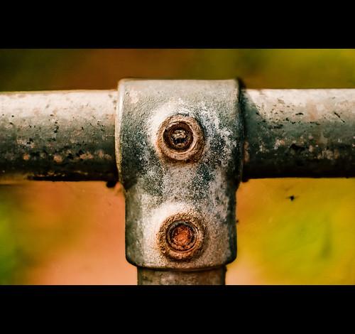 Fence - close up!