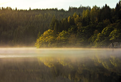 Autumn Gold (Stuart Stevenson) Tags: morning autumn trees light mist reflection water misty fog canon mirror golden scotland still canon300d scottish stuart stevenson colourful loch shortbreadtin lochard ©stuartstevenson changingcolourofthelandscape
