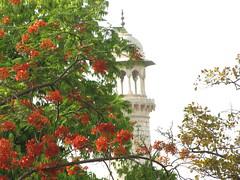 20110423_Taj_Mahal_042