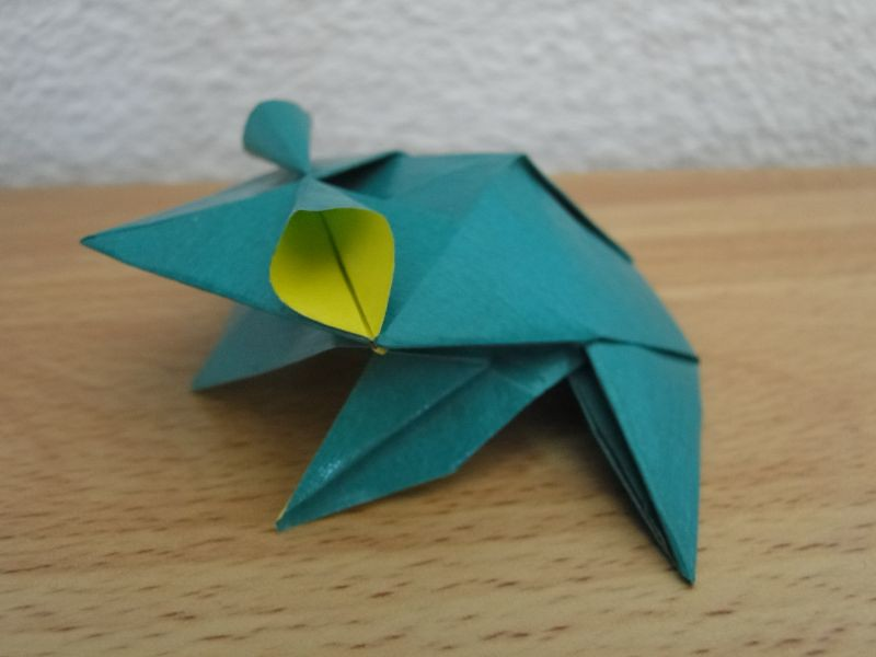 The world 39 s best photos by sylenomelori flickr hive mind - Origami grenouille sauteuse pdf ...