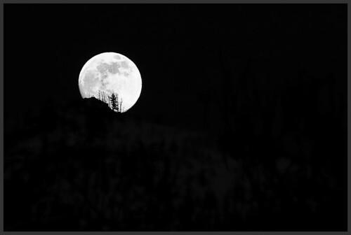 Moon-_MG_1191