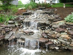 Water Features and Ponds | Masonry Division | Johnsons Landscaping 13 (Johnsons Landscaping Service, Inc) Tags: park lighting county water stone stairs work silver landscape outdoors design dc washington spring md nw exterior northwest gardening landscaping masonry johnson scenic fences plan maryland chevy chase potomac service walkways features montgomery walls kensington takoma decks bethesda ponds silverspring stonewalls takomapark driveways carpentry rockville retaining drainage paver chevychase olney arbors patios plantings trellises retainingwalls exteriorlighting landscapelighting segmental johnsonslandscapingservice incresidentialandcommerciallandscapedesignservicesinwashington montgomerycountyotherservicesgardendesign yarddesigns stepsandwalkways timberwallspatiosstepsandwalkwayspondsgardendesignstonewallsexteriorlightingpruningandtrimmingpaversflagstonewalkwayflagstonepatiodrainageretainingwallsyarddesignslandscapingservicejohnsonlandscapinglandscapedesign