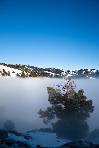 Blue Sky and Fog