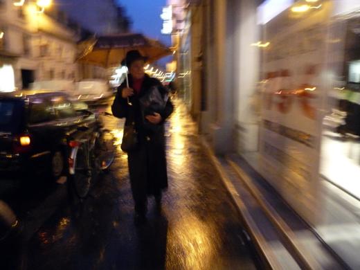 22_janvier_2009_pluie_P1010251