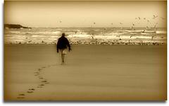 Footprints (scrapping61) Tags: beach beautiful sepia pyramid roadtrip explore coastal washingtonstate legacy washingtoncoast tqm 2007 tistheseason whatyousee outstandingshots oceanshore copperlantern mywinners photographydigitalart amazingamateur proudshopper proudexcellence amazingexcellence scrapping61 multimegashot awardtree magicdonkeysbest finephotoshopdesign novavitanewlife novaexcellence tisexcellence miasbest musicsbest mdtbmasterpiece thenewselectbest daarklands finestimages flickrvault magicunicornverybest selectbestfavorites sailsevenseas flickrvaultexcellence trolledproud trollieexcellence dragondaggarphotos pastfeaturedwinner