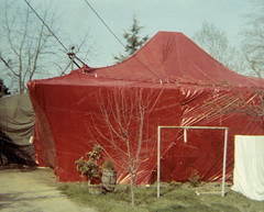 House in a Tent (Beedle Um Bum) Tags: house termites wasco tented 652 poplarave fumigration