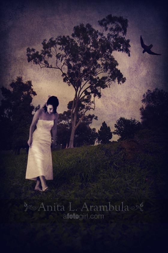 Raven Meadow©