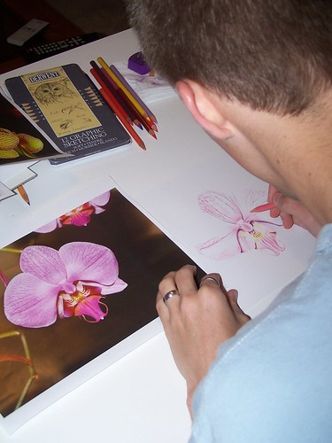 orchid colored pencil 2
