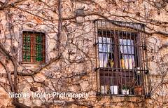 Ventanas de Escaladei (Nicolas Moulin (Nimou)) Tags: edificios pueblo casas turismo escaladei scaladei priorato