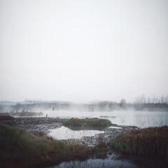 (Salva Lpez) Tags: morning lake cold square landscape mood atmosphere explore vegetation frio 2470l vapor daybreak sils estany canoneos5dmarkii
