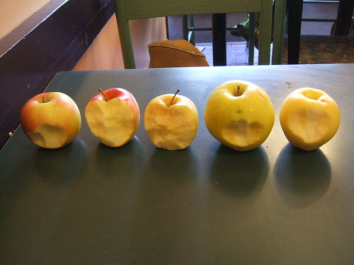 free organic apples!