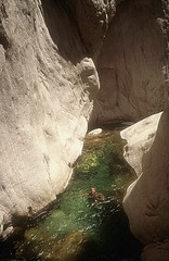 Canyon de la Vacca : Laurent dans le bief avant le 3ème rappel (obligatoire)