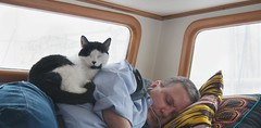 Naptime in the Pilot House (A.Davey) Tags: cat boat blackandwhitecat catrestingonhuman