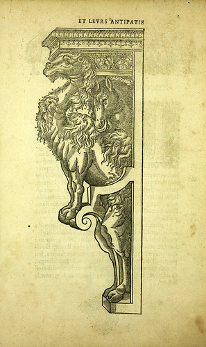 002-Camello-Joseph Boillot 1592