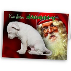 I've been naughty ... Christmas card of puppy dog, Kahuna Luna, with Santa Claus looking on (Beverly & Pack) Tags: pictures santa christmas xmas red dog pets white house holiday man cute art classic argentina saint animals naughty puppy beard photography am nice artwork eyes puppies closed sad head unique bad pit bull best luna pitbull boo nicholas dalmation terrier staff card american lucky apology albino letter boxer claus scared kriskringle kahuna dear popular caught staffordshire greeting dalmatian amstaff dogo spotless forgiveness clause stnick imsorry ashamed embarassed apbt bowed