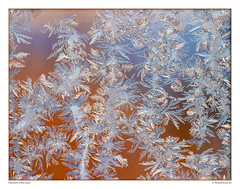 Frozen Fractals 7403-07 (StacyN - MichiganMoments) Tags: winter ice frozen frost crystals ferns fernfrost