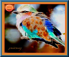 LET'S ALL SING LIKE THE BIRDIES SING... (fantartsy JJ *2013 year of LOVE!*) Tags: camera friends light sunset vacation art nature beauty birds photoshop canon whimsy photoart birdies goldenoldies platinumphoto flickrdiamond originaldigitalart thesuperbmasterpiece originaldigitalpainting