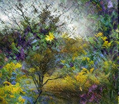 September (Joana Rojas - still here) Tags: flowers art nature collage digitalart september layers wildflowers shrubs beautifulexpression swohio theawardtree struckbyrainbow