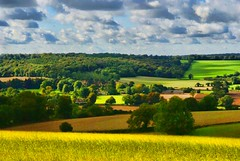 A Chiltern Valley (at the end of Summer) (algo) Tags: blue trees england white green yellow photography gold evening interestingness woods topf50 shadows topv1111 topv999 topv222 hills explore fields patchwork algo topf100 hedges supershot explored explore251 thechilternhills 90918 flickrlovers suprshots coth5