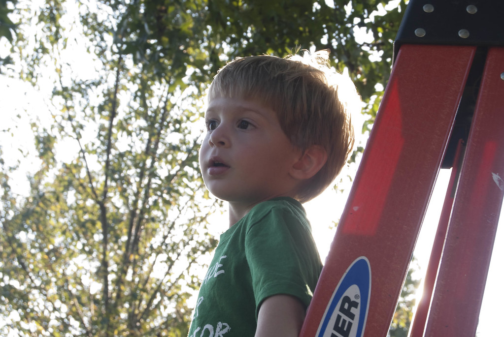 Matt on ladder