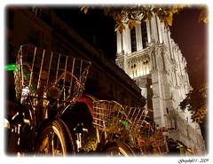 Vlib - Notre-Dame (Greyshift11) Tags: new york paris france statue by seine night moulin rouge lumix coeur panasonic libert pont g1 mm notre dame neuf nuit velo 45mm ville liberte gargouille vlo dmc sacr 1445 conciergerie 14mm velib vlib captiale dmcg1