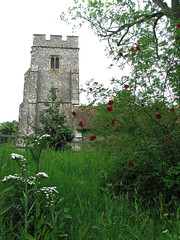 In An English Country Churchyard... (Louise and Colin) Tags: old uk red england english heritage history church beautiful kent pretty britain meadow churchtower medieval british lovely quaint picturesque dogrose christendom romneymarsh churchofengland stoneinoxney meadowflowers isleofoxney