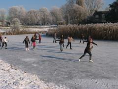 IMG_3011 (EllenElemans) Tags: bosschebroek winters wintersfeer schaatsgymhbbcentrum