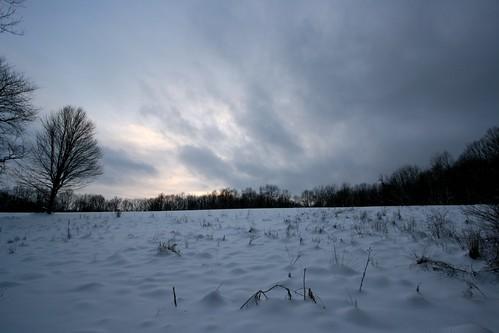 365.11 - Photowalk2 - Snowy field