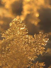 ice crystal in the sun (**MIKA**) Tags: mywinners