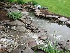 Water Features and Ponds | Masonry Division | Johnsons Landscaping 16 (Johnsons Landscaping Service, Inc) Tags: park lighting county water stone stairs work silver landscape outdoors design dc washington spring md nw exterior northwest gardening landscaping masonry johnson scenic fences plan maryland chevy chase potomac service walkways features montgomery walls kensington takoma decks bethesda ponds silverspring stonewalls takomapark driveways carpentry rockville retaining drainage paver chevychase olney arbors patios plantings trellises retainingwalls exteriorlighting landscapelighting segmental johnsonslandscapingservice incresidentialandcommerciallandscapedesignservicesinwashington montgomerycountyotherservicesgardendesign yarddesigns stepsandwalkways timberwallspatiosstepsandwalkwayspondsgardendesignstonewallsexteriorlightingpruningandtrimmingpaversflagstonewalkwayflagstonepatiodrainageretainingwallsyarddesignslandscapingservicejohnsonlandscapinglandscapedesign