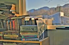 Connor's Room (Kira Bajira) Tags: mountains window book books bookshelf indoors hdr englishmajor pfosilver january2009