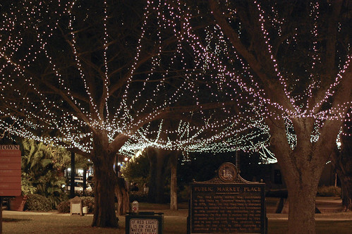 St. Auggie's Lights 01