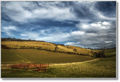 Nothing To Count (Finntasia old) Tags: trees winter sky clouds pen fence landscape cattle sheep bright gates january clear crisp dorset fields friday melplash finntasia nigelfinn
