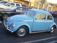 Bug Side (classic77) Tags: blue classic bug wagon parking beetle lot beatle 1956 volks 56 volkswagon