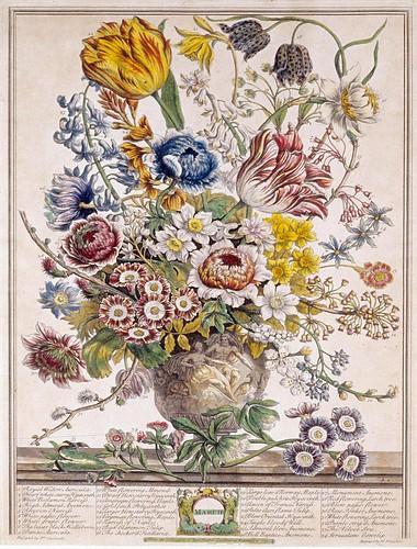 003- Marzo-Los doce meses del año en flores