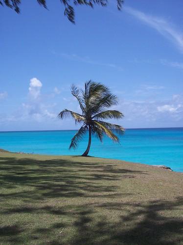 Accra_Beach_Barbados