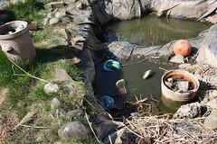 Gartenarbeit (xeviousbth) Tags: teich garten frhling wetterau 210309 niederwllstadt