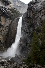 Lower Yosemite Falls 1