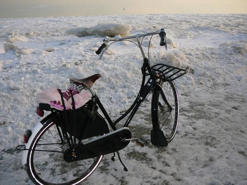 Commuter Profile Dottie White From Let S Go Ride A Bike